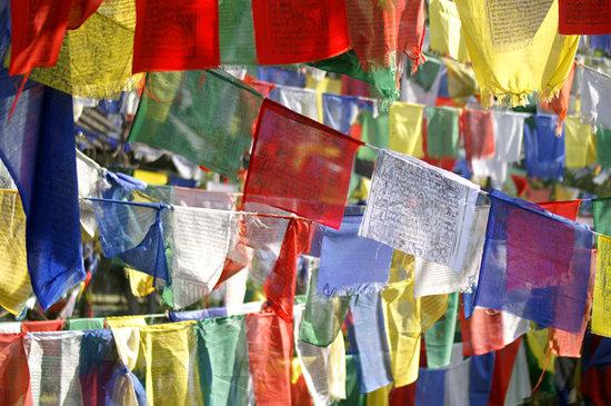 Himachal Pradesh, Indien: Bandiere preghiera tibetane
