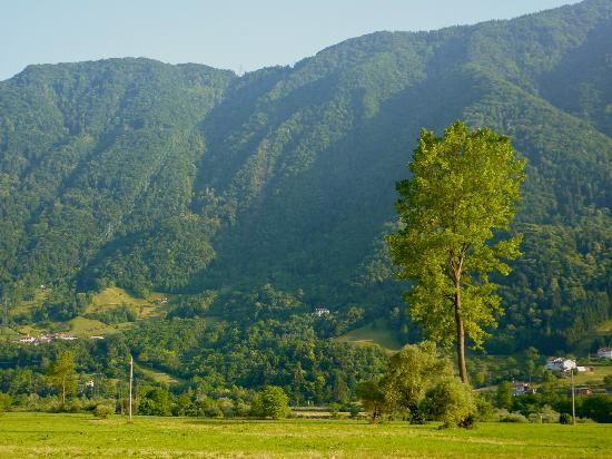 Villa Rosa: 'Tis the property mid field of photo