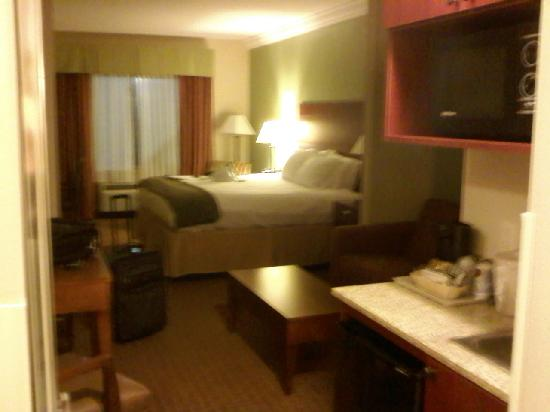Holiday Inn Express & Suites Niagara Falls: King Suite 2