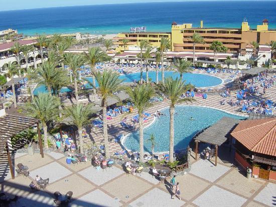 Occidental Jandia Mar : Vistas piscina