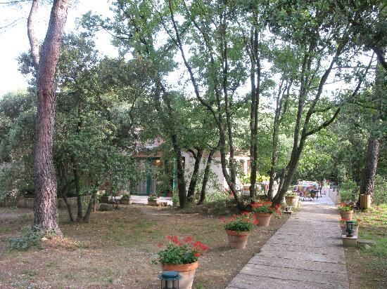 Mas de Fauchon: 広大な敷地にコテージが散在する