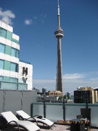 Hyatt Regency Toronto: CN Tower view from Roof Top Pool