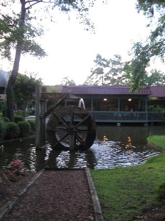 Dye's Gullah Fixin's : The small pond/lake out front of Dye's