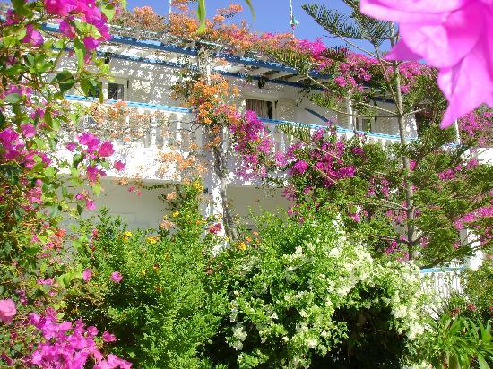 Alinda, Grèce : angelika leros
