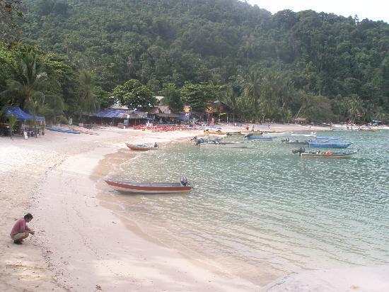 Senja Bay Resort: Coral Bay - Senja is in the far corner