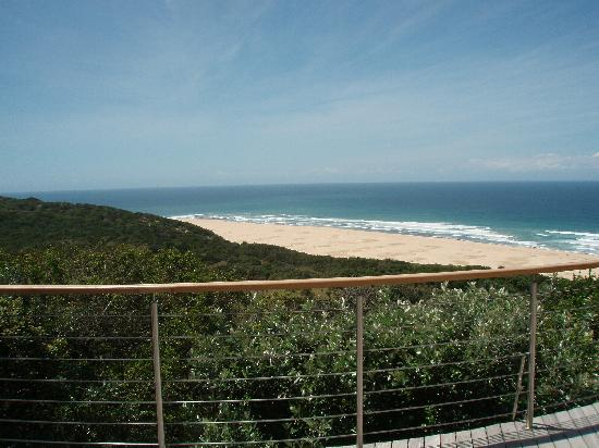 Oceana Beach and Wildlife Reserve: The view from our deck
