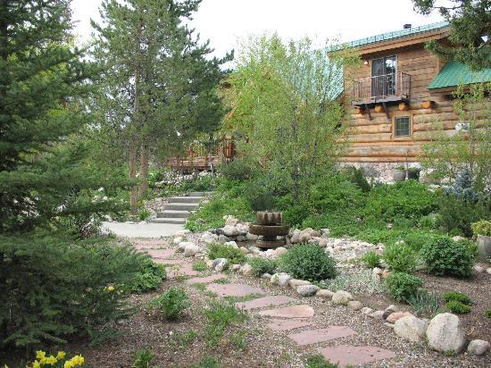Wild Horse Inn : The front gardens