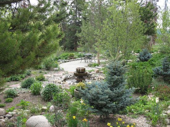 Wild Horse Inn : More gardens
