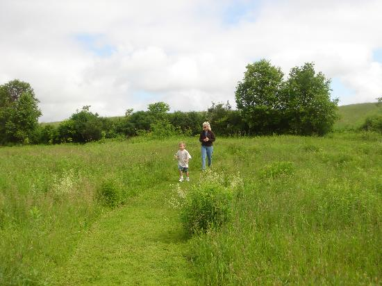 The Meadowlark Inn Cooperstown: Running of the maze