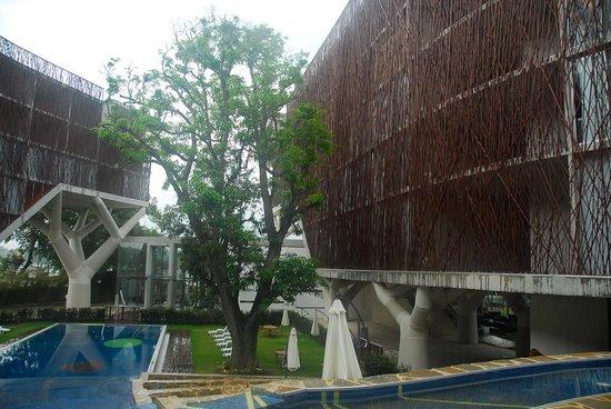 Holiday Inn Tuxpan: Its name, Los Mangos from the Mango tree