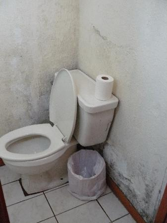 Hotel Heredia : Gross Bathroom