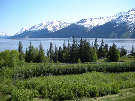 Anchorage, AK: Taken on bird island, Seward Hwy