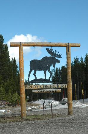Big Moose Resort: Big Moose, big sign