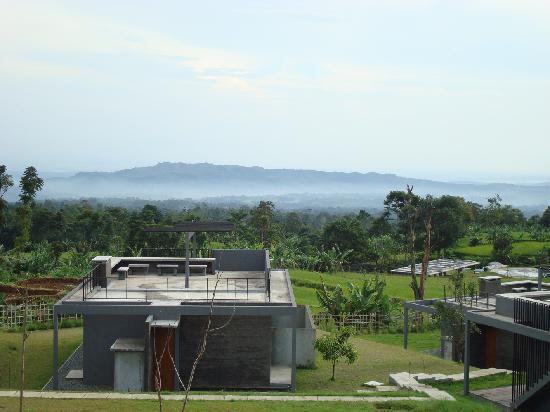 Tea Garden Resort Bandung : The View