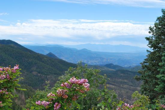 Hannagan Meadow Lodge: The White Mountains in AZ
