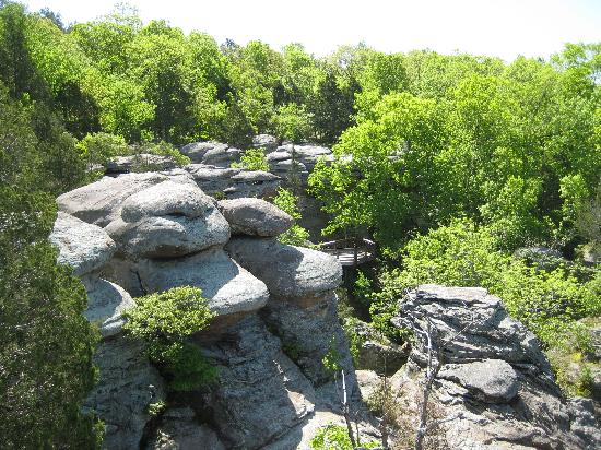 Camel Rock At Garden Of The Gods Picture Of Shawnee National Forest Illinois Tripadvisor