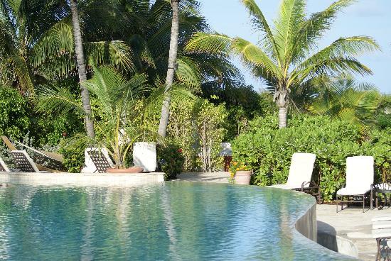 Grand Isle Resort & Spa : Infinity Pool at Grand Isle