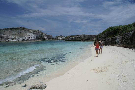 Grand Isle Resort & Spa : Iguana Island