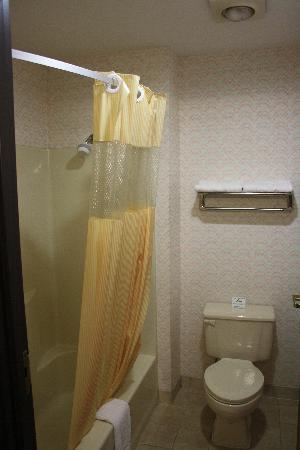 Days Inn Battlefield Rd/Hwy 65: salle de bain