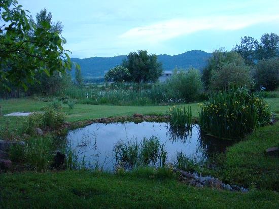 One of several Ponds at Clear Creek Farm
