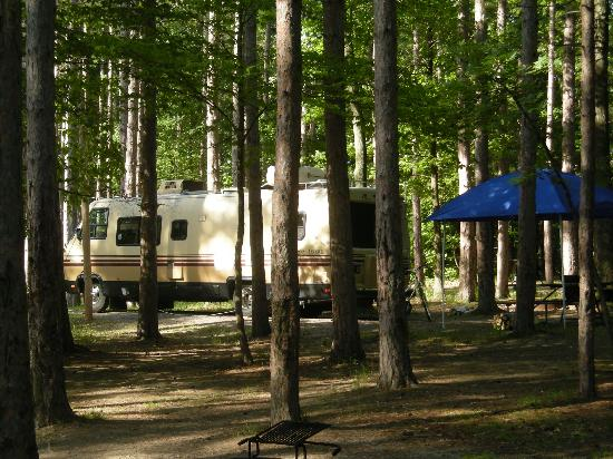 Communing and camping in letchworth state park pristine for Cabins near letchworth state park