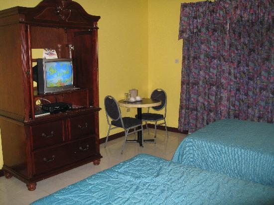 Altamont Court Hotel Kingston : the TV and tiny chair cum table set.. worse than a motel room isnt it??