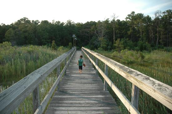 Scotland, MD: My son on the fishing pier