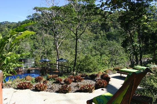 Manoas: veranda overlooking pool and the river