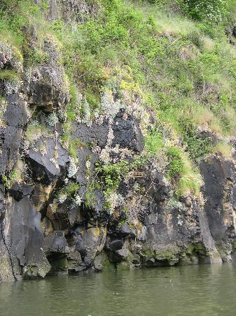 Columbia River Kayaking Day Tours: lower gorge cliff wall