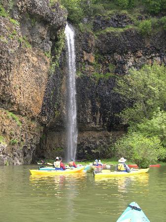 Columbia River Kayaking Day Tours : lower gorge waterfall