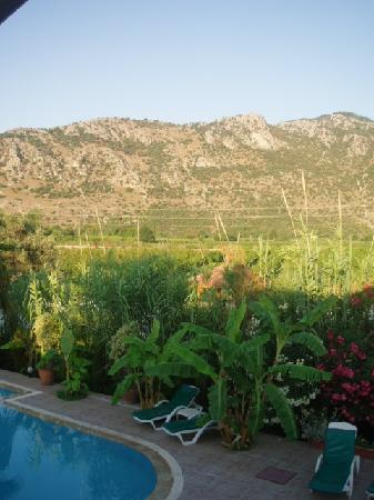 Dalyan Garden Pension: the pool + view