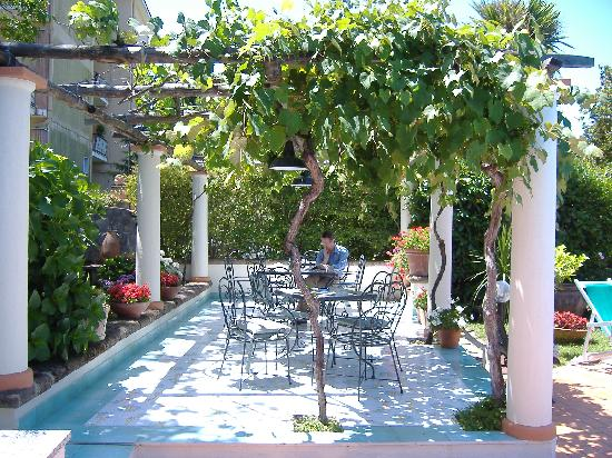 Villa Fernanda Hotel: vine covered sitting area