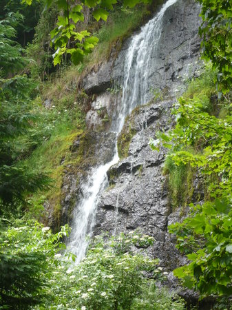 Canonteign Waterfalls and Country Park