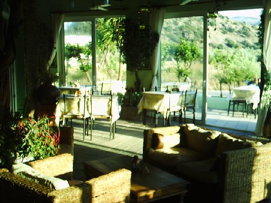 Olive Grove: lounging area