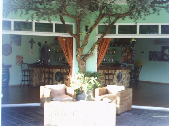 Olive Grove: comforable sitting area