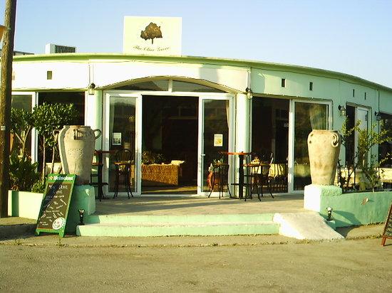 Olive Grove: outside
