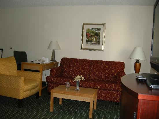 Residence Inn Sacramento Airport Natomas : Seating area
