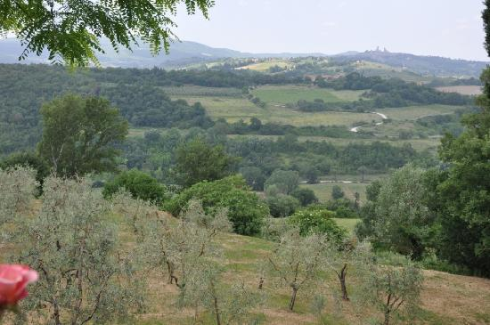 Agriturismo Santulivieri: View from outside apartment