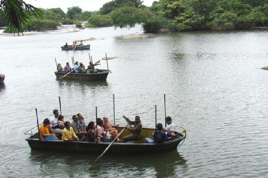 Ranganathittu Bird Sanctuary: Boat safari at Ranganathittu