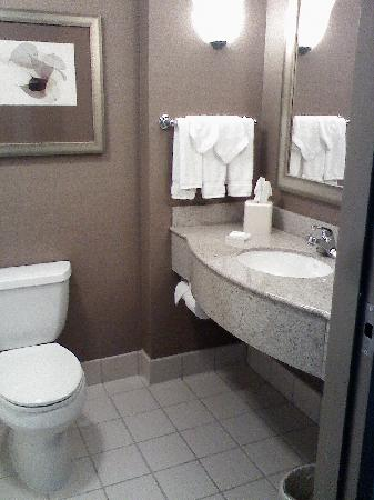 Hilton Garden Inn Worcester: clean bathroom
