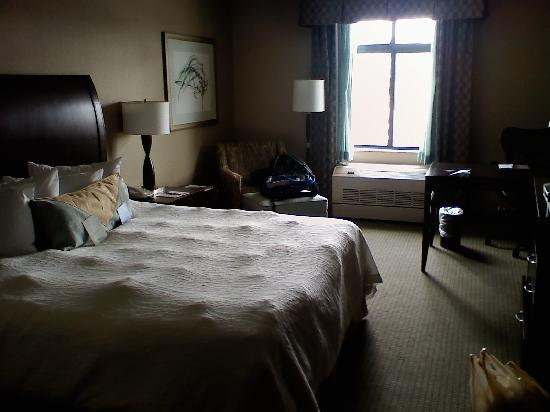 "Hilton Garden Inn Worcester: roomy (notice the ""lumps"" on the bed.)"