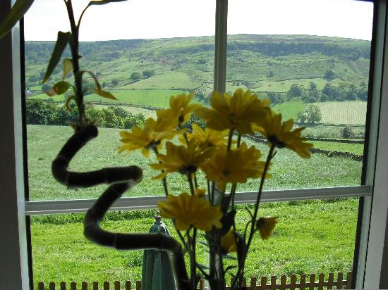 Five Acre View: View from bedroom