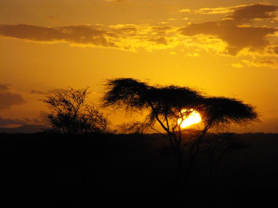 Porini Amboseli Camp : Sundowners with G and T