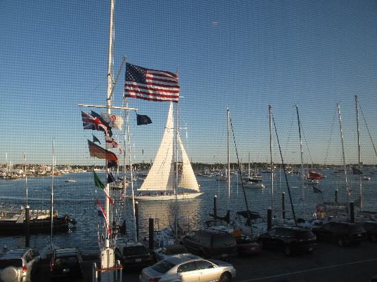 Belle View Inn: So many Sailboats