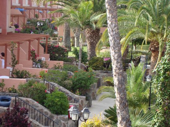 The view from room 7 bild fr n jardin del sol apartments for Jardin del sol gran canaria