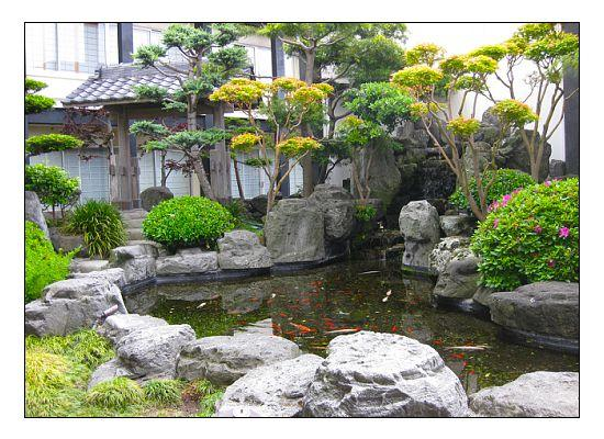 Japanese garden in the courtyard also has koi pond for Japanese garden with koi pond
