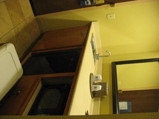 Hampton Inn and Suites Lake City: Kitchenette