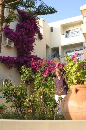 Скалета, Греция: tres fleuri !