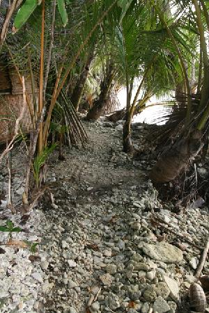 Kosrae Village Ecolodge & Dive Resort: Weg