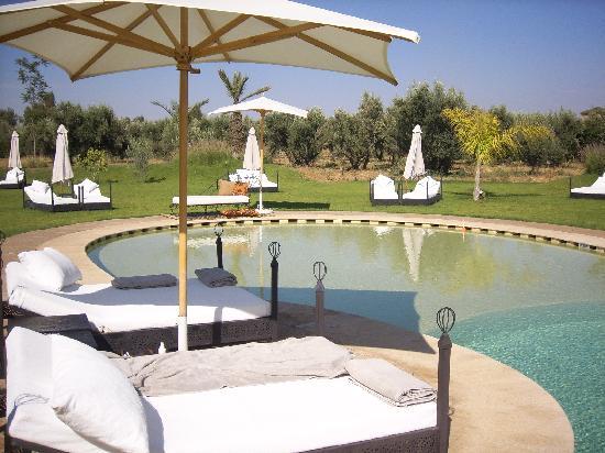 Riad Al Mendili Kasbah: La piscine